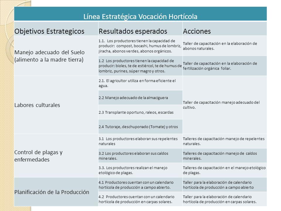 Línea Estratégica Vocación Hortícola