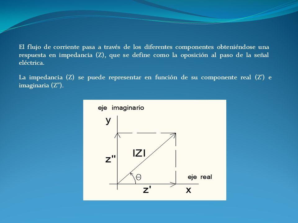 El flujo de corriente pasa a través de los diferentes componentes obteniéndose una respuesta en impedancia (Z), que se define como la oposición al paso de la señal eléctrica.