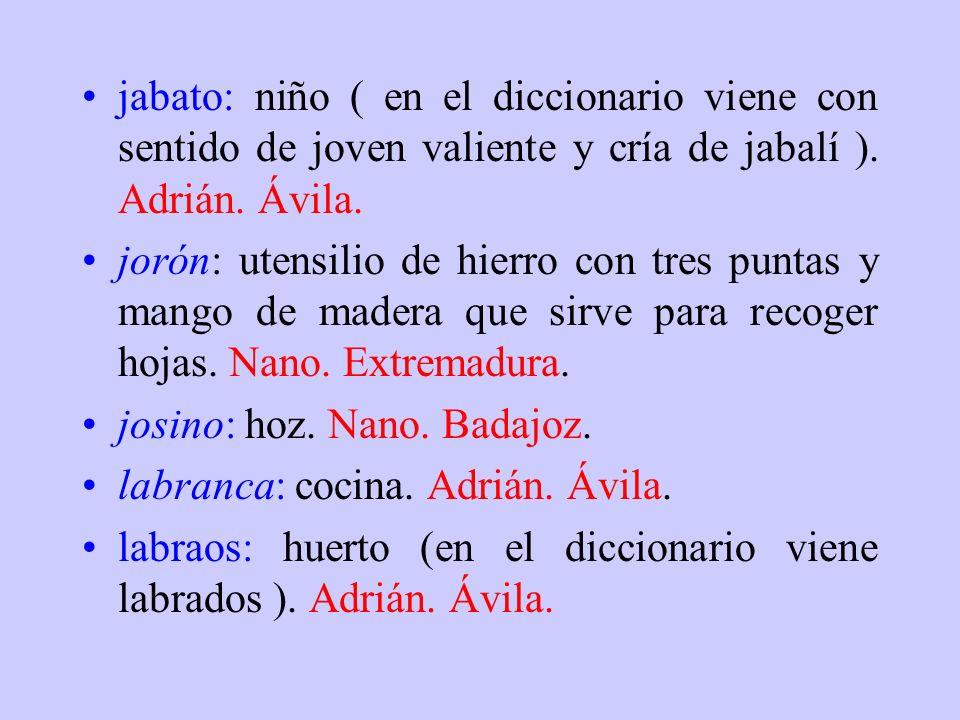 jabato: niño ( en el diccionario viene con sentido de joven valiente y cría de jabalí ). Adrián. Ávila.