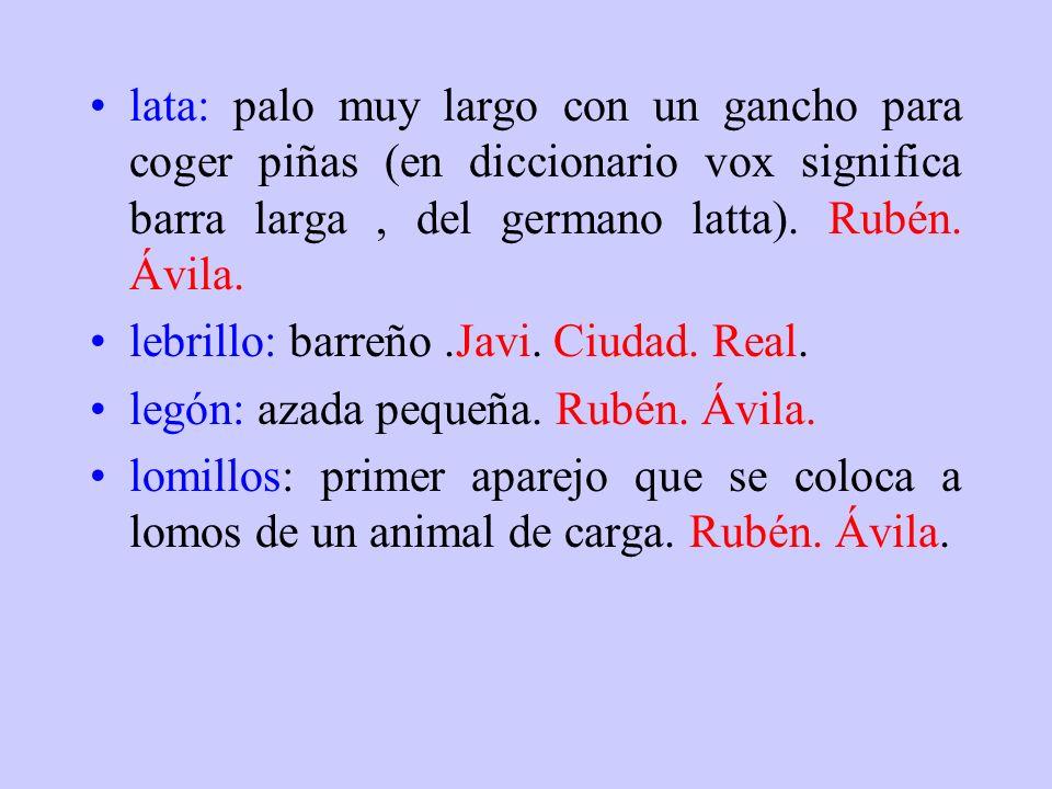 lata: palo muy largo con un gancho para coger piñas (en diccionario vox significa barra larga , del germano latta). Rubén. Ávila.