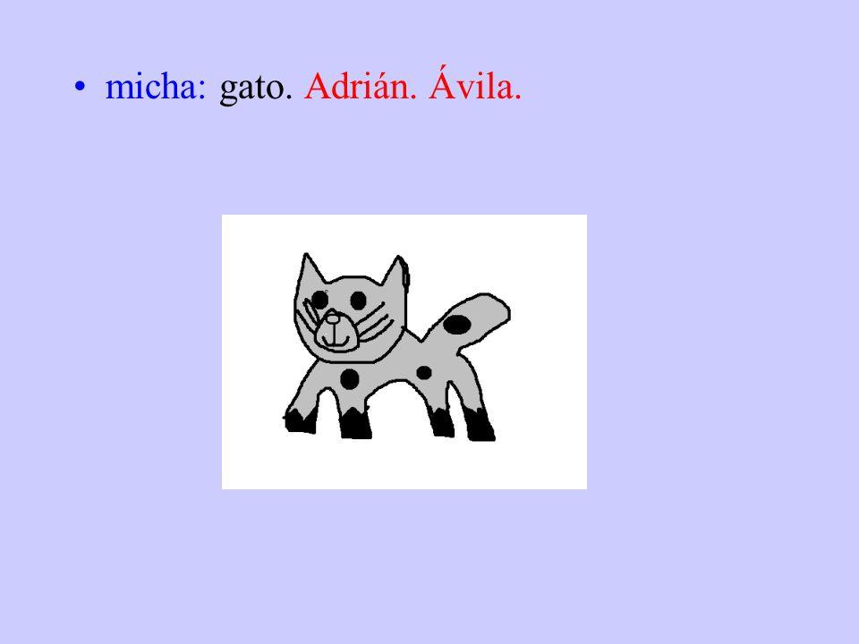 micha: gato. Adrián. Ávila.