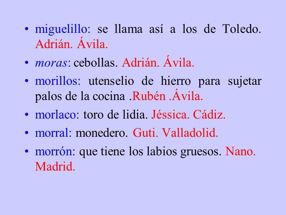 miguelillo: se llama así a los de Toledo. Adrián. Ávila.