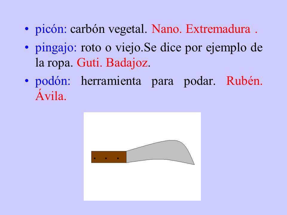 picón: carbón vegetal. Nano. Extremadura .