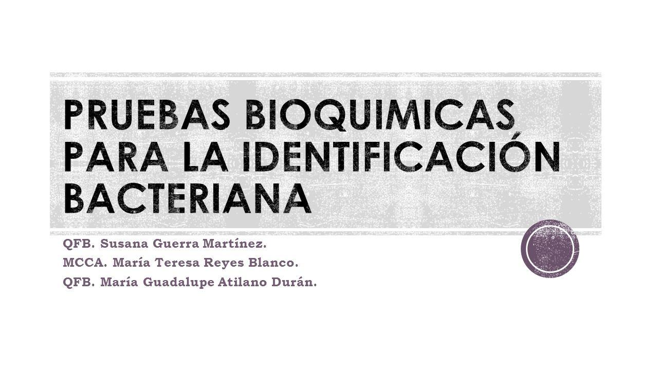 PRUEBAS BIOQUIMICAS PARA LA IDENTIFICACIÓN BACTERIANA