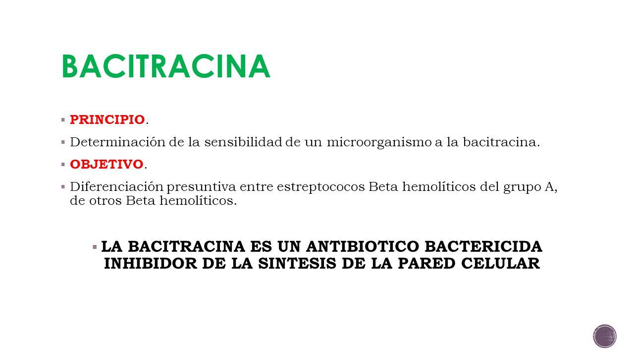 BACITRACINA PRINCIPIO. Determinación de la sensibilidad de un microorganismo a la bacitracina. OBJETIVO.