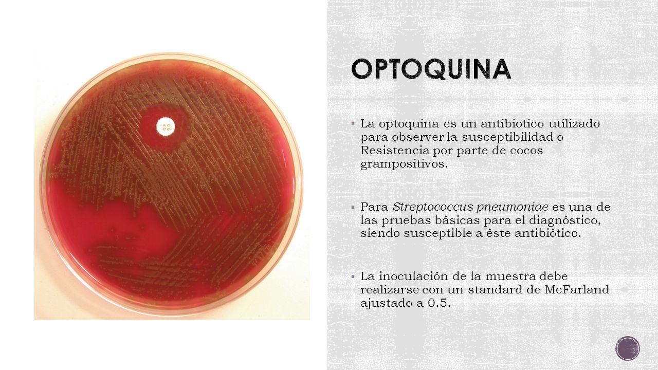 OPTOQUINA La optoquina es un antibiotico utilizado para observer la susceptibilidad o Resistencia por parte de cocos grampositivos.