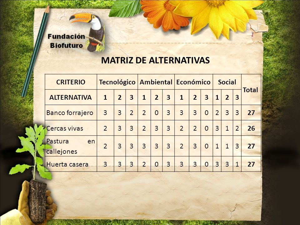 MATRIZ DE ALTERNATIVAS