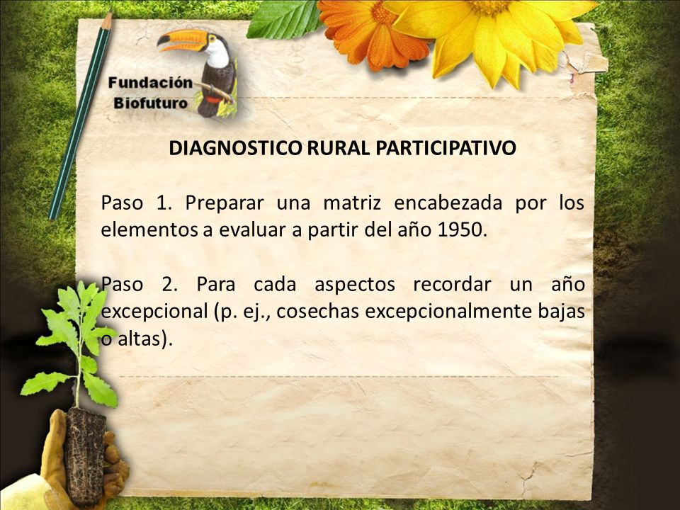 DIAGNOSTICO RURAL PARTICIPATIVO