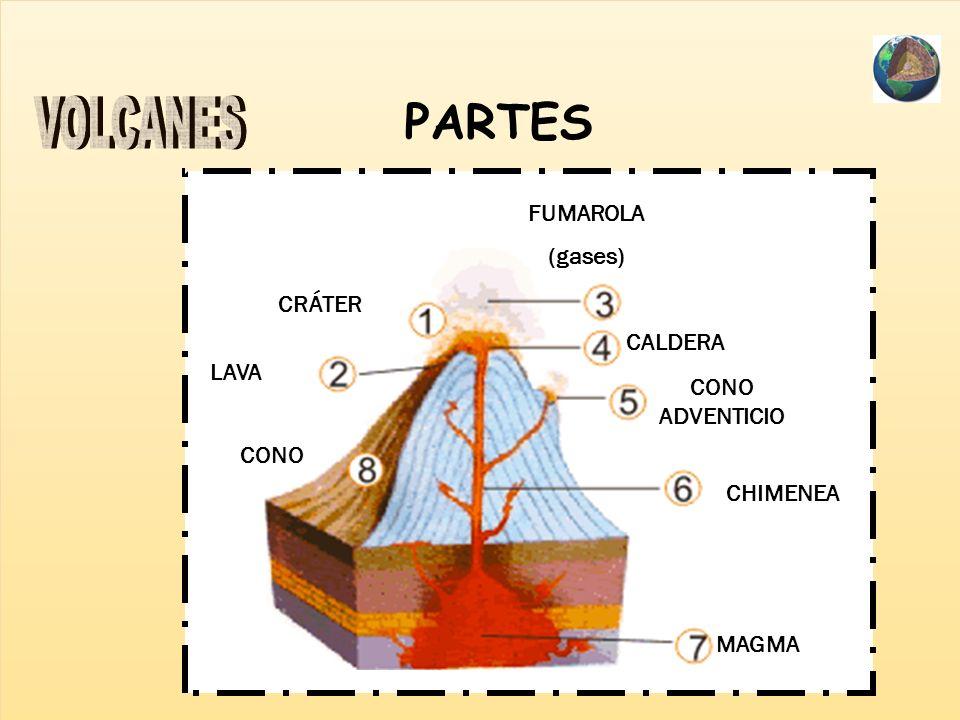 PARTES VOLCANES FUMAROLA (gases) CRÁTER CALDERA LAVA CONO ADVENTICIO