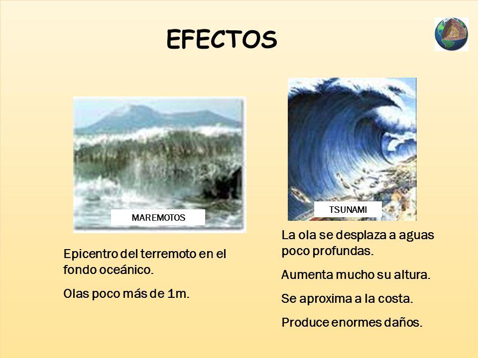 EFECTOS La ola se desplaza a aguas poco profundas.