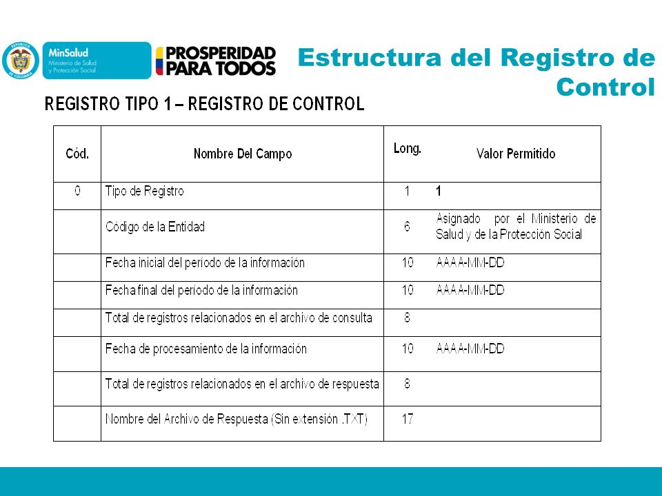 Estructura del Registro de Control