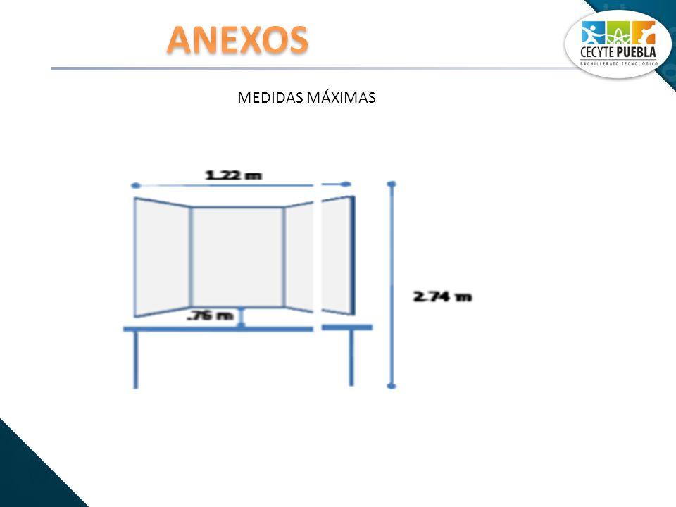 ANEXOS MEDIDAS MÁXIMAS