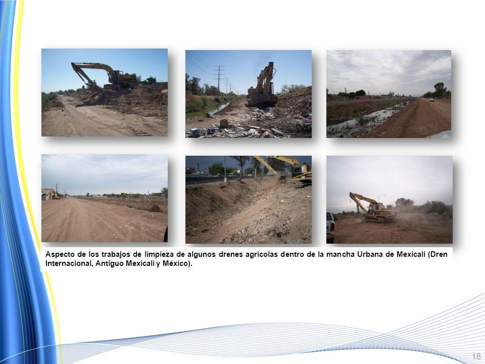 Aspecto de los trabajos de limpieza de algunos drenes agrícolas dentro de la mancha Urbana de Mexicali (Dren Internacional, Antiguo Mexicali y México).
