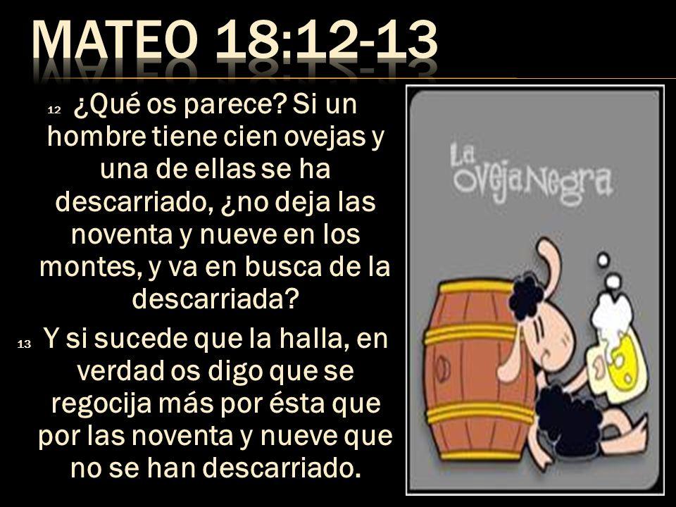 MATEO 18:12-13