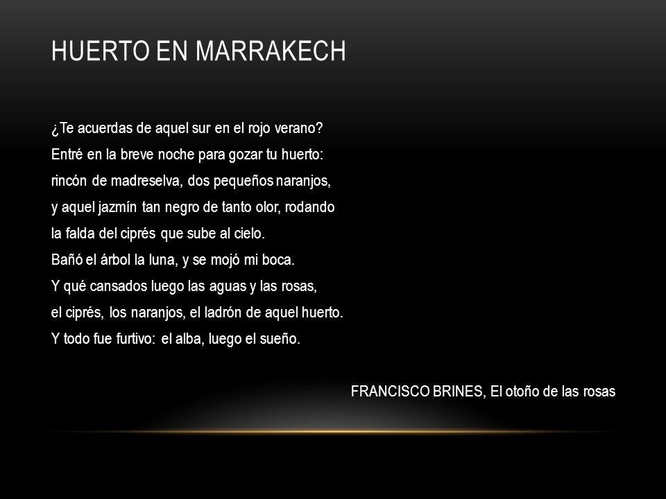 HUERTO EN MARRAKECH