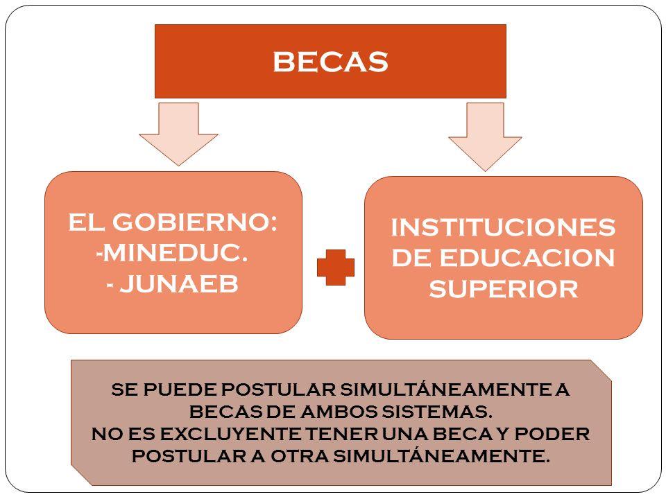 BECAS EL GOBIERNO: INSTITUCIONES DE EDUCACION SUPERIOR -MINEDUC.