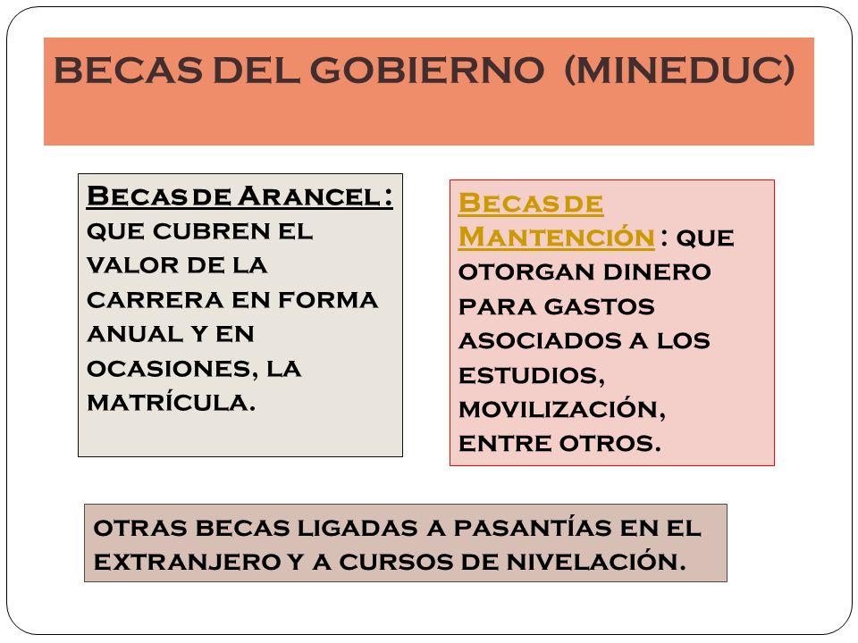BECAS DEL GOBIERNO (MINEDUC)