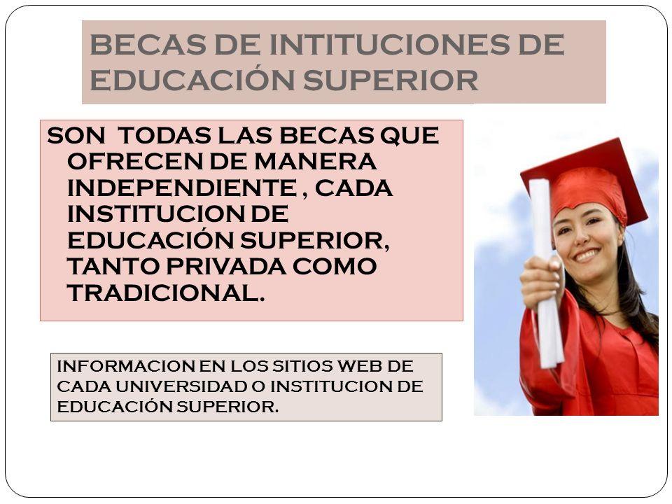 BECAS DE INTITUCIONES DE EDUCACIÓN SUPERIOR