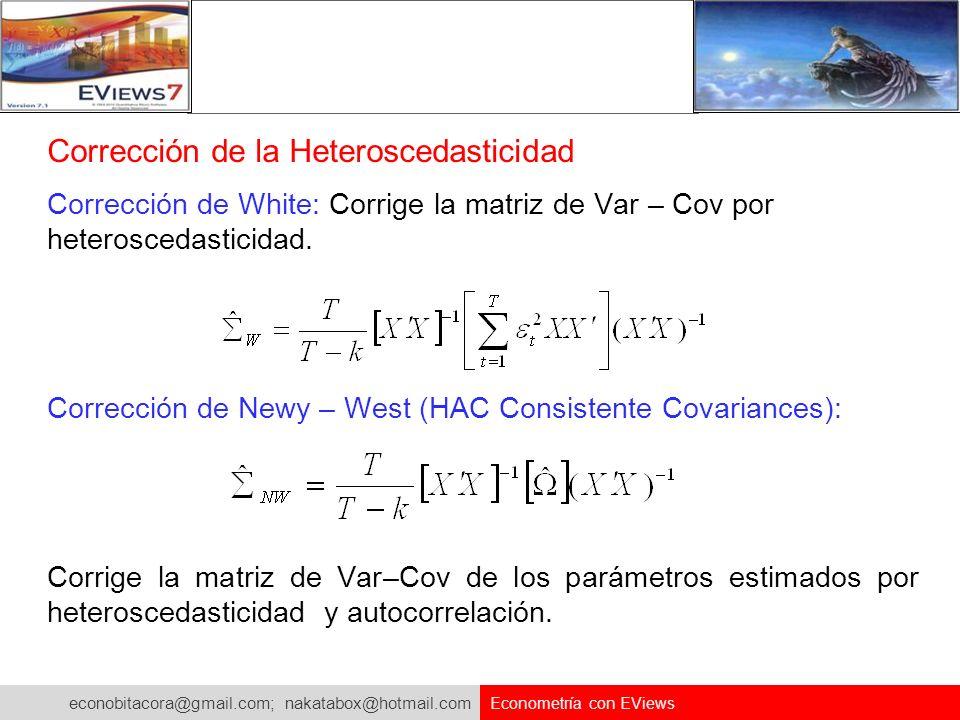 Corrección de la Heteroscedasticidad
