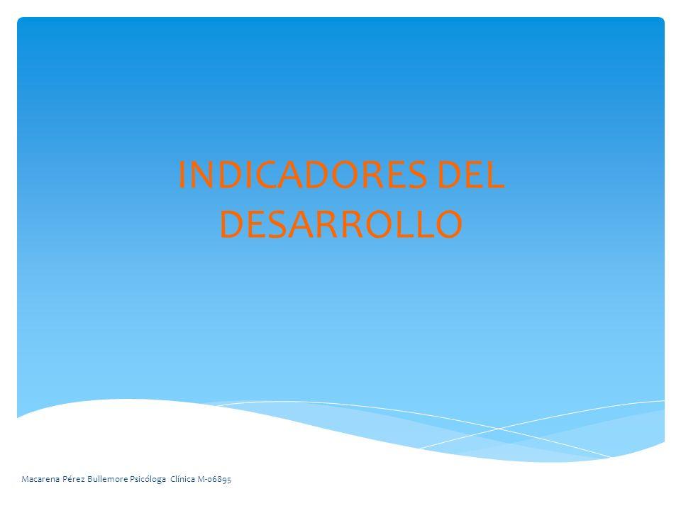 INDICADORES DEL DESARROLLO