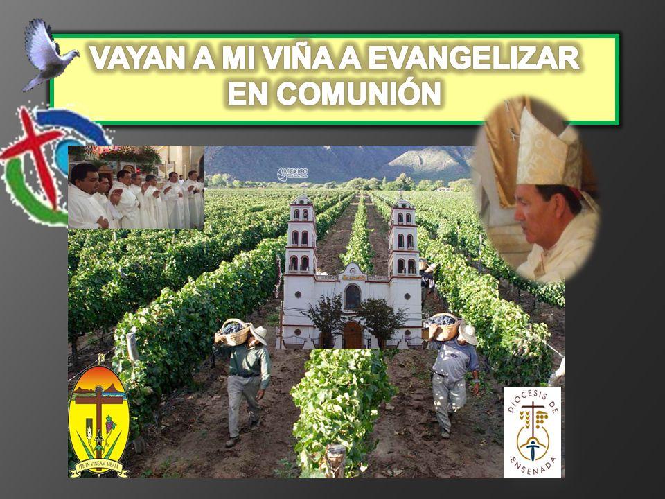 VAYAN A MI VIÑA A EVANGELIZAR EN COMUNIÓN