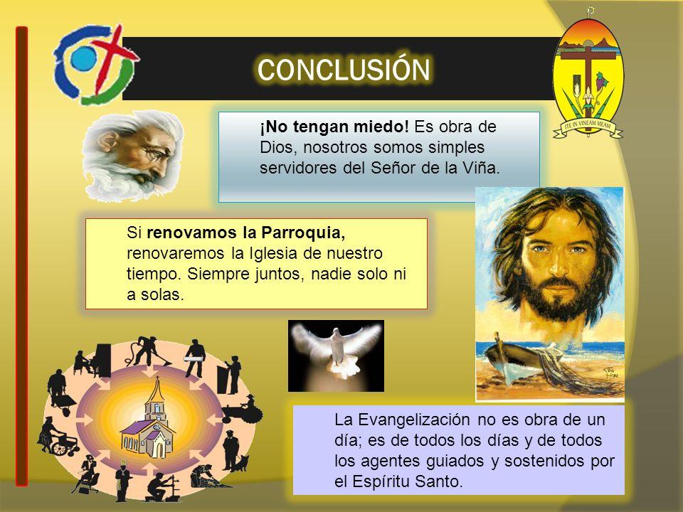 CONCLUSIÓN ¡No tengan miedo! Es obra de Dios, nosotros somos simples servidores del Señor de la Viña.