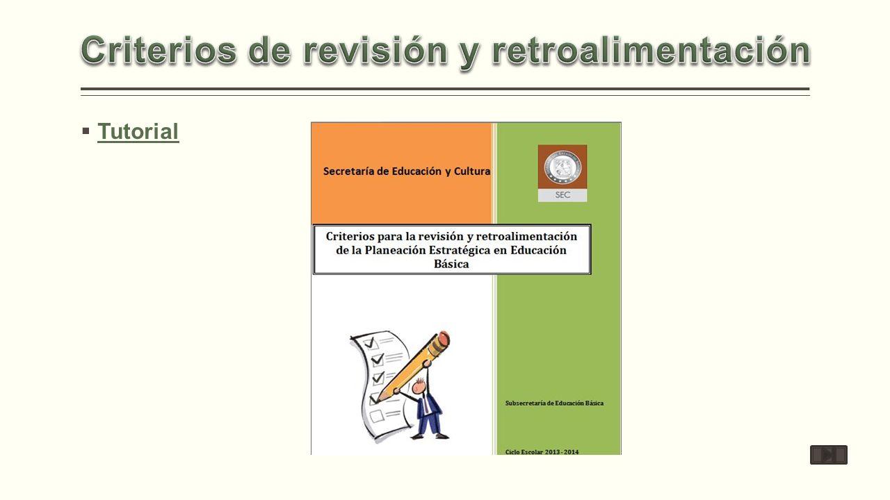 Criterios de revisión y retroalimentación