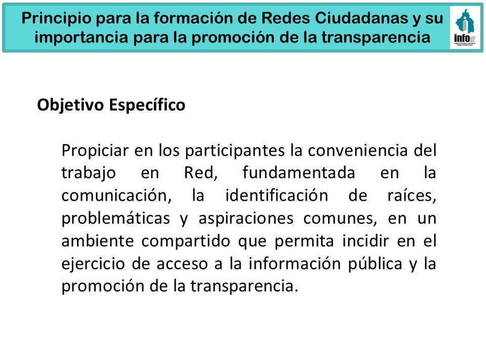 Principio para la formación de Redes Ciudadanas y su importancia para la promoción de la transparencia
