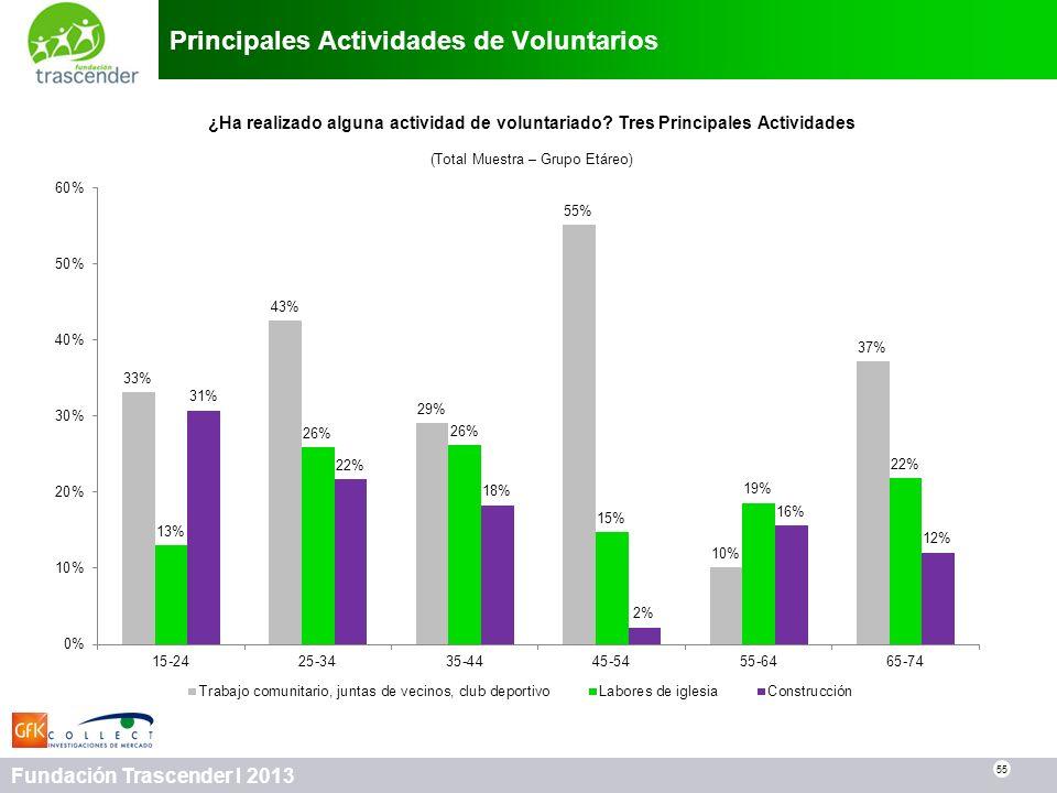 Principales Actividades de Voluntarios