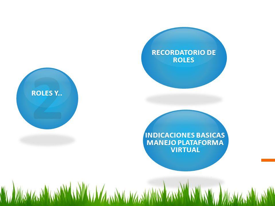 INDICACIONES BASICAS MANEJO PLATAFORMA VIRTUAL