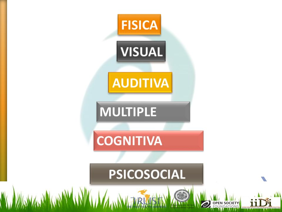 FISICA VISUAL AUDITIVA MULTIPLE COGNITIVA PSICOSOCIAL