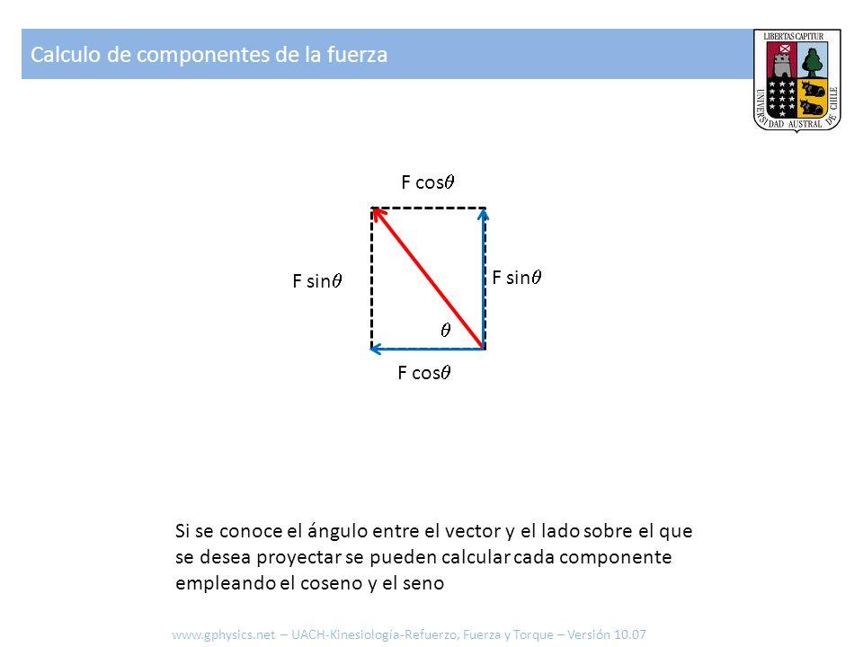 Calculo de componentes de la fuerza