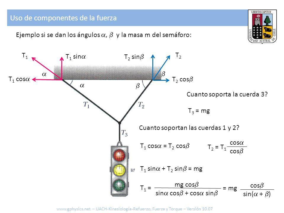 Uso de componentes de la fuerza