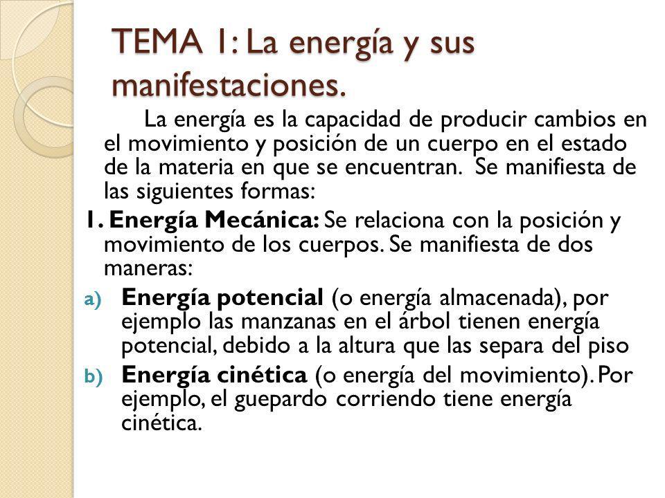 TEMA 1: La energía y sus manifestaciones.