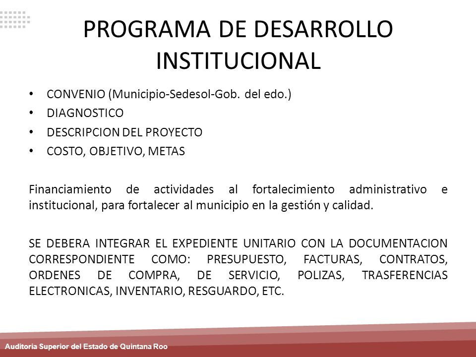 PROGRAMA DE DESARROLLO INSTITUCIONAL