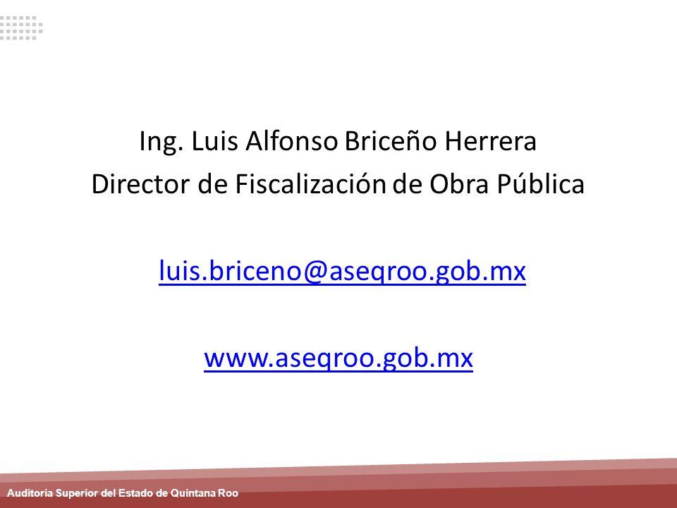 Ing. Luis Alfonso Briceño Herrera