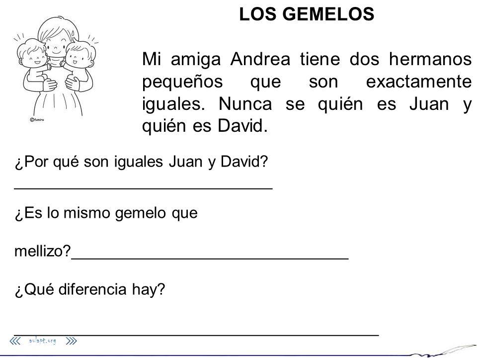 LOS GEMELOS Mi amiga Andrea tiene dos hermanos pequeños que son exactamente iguales. Nunca se quién es Juan y quién es David.
