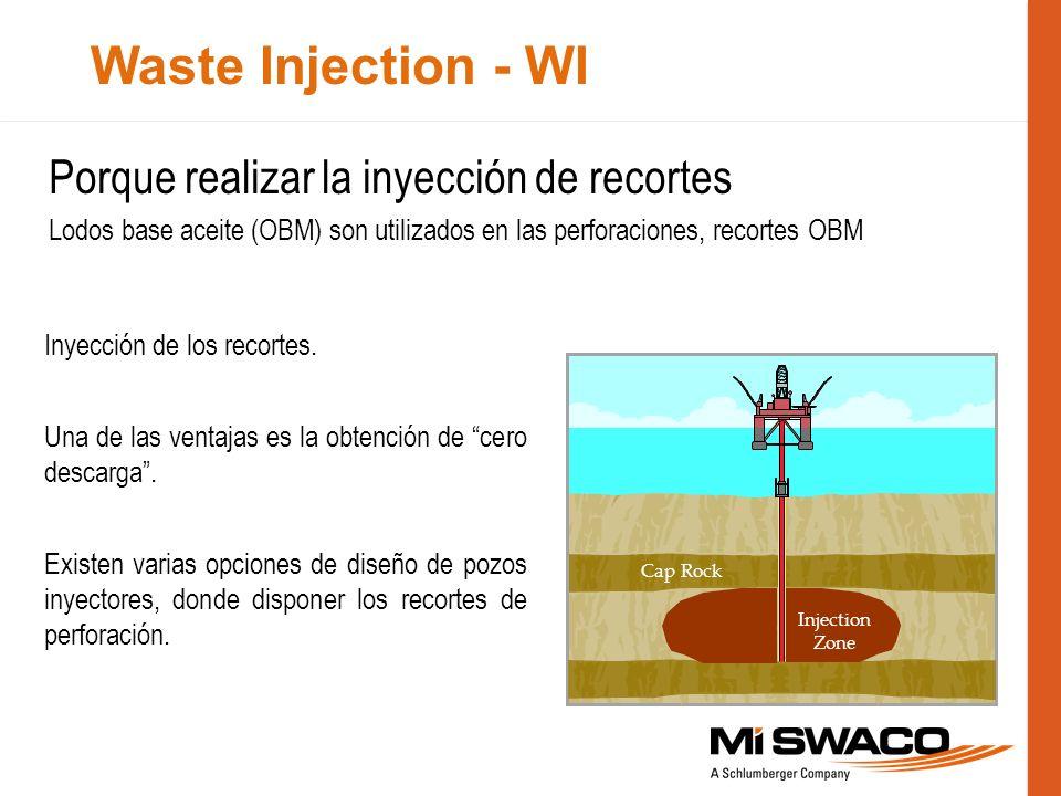 Waste Injection - WI Porque realizar la inyección de recortes