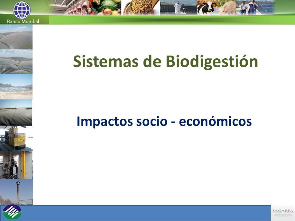 Sistemas de Biodigestión