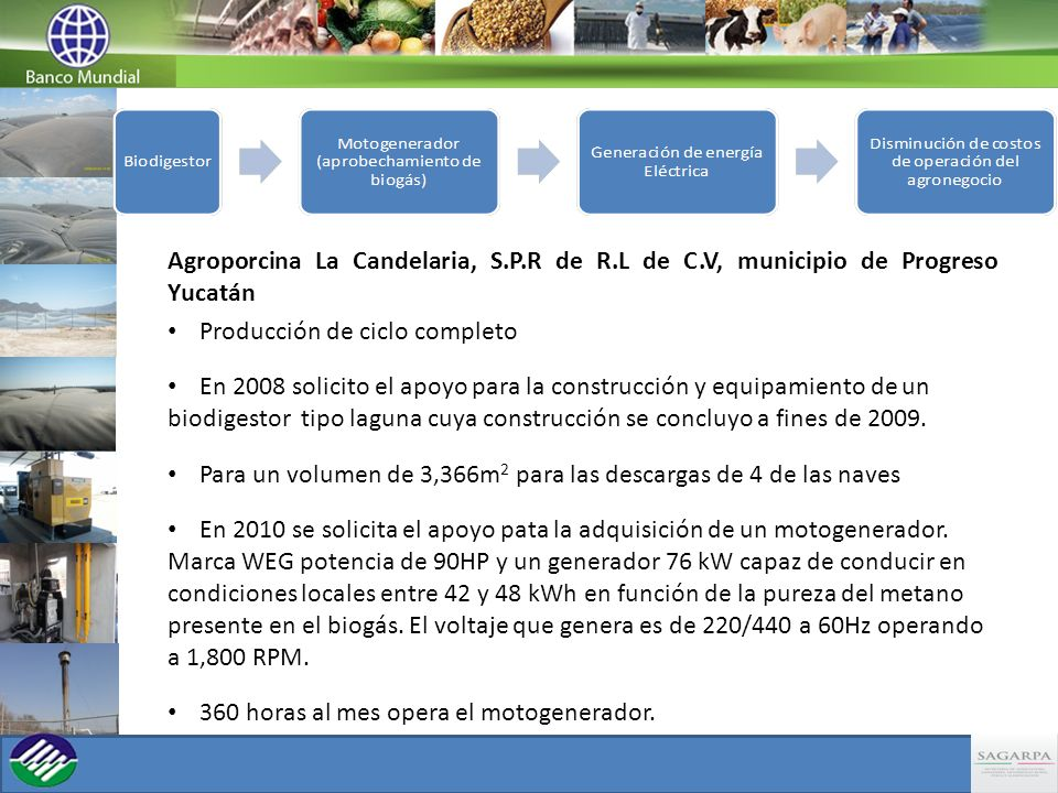 Agroporcina La Candelaria, S. P. R de R. L de C