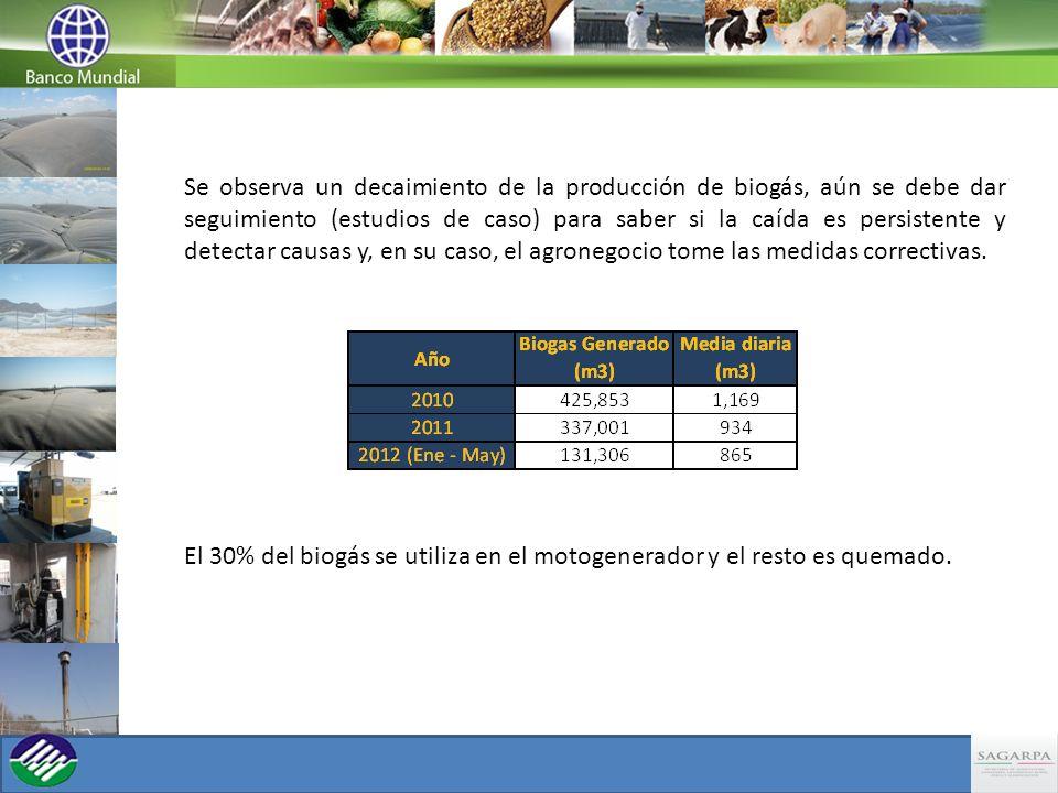 Se observa un decaimiento de la producción de biogás, aún se debe dar seguimiento (estudios de caso) para saber si la caída es persistente y detectar causas y, en su caso, el agronegocio tome las medidas correctivas.