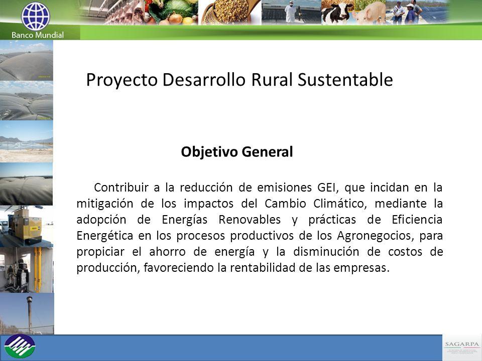 Proyecto Desarrollo Rural Sustentable