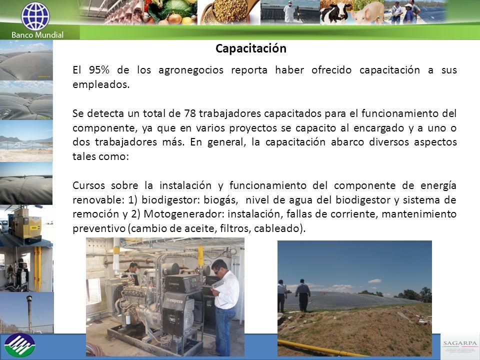 Capacitación El 95% de los agronegocios reporta haber ofrecido capacitación a sus empleados.