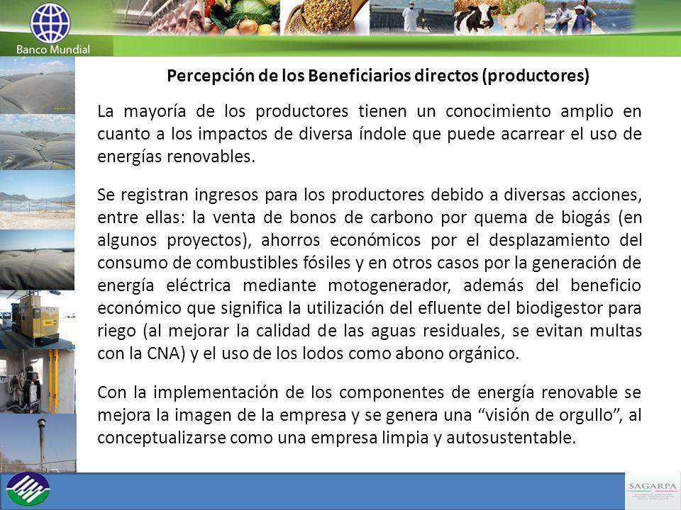 Percepción de los Beneficiarios directos (productores)