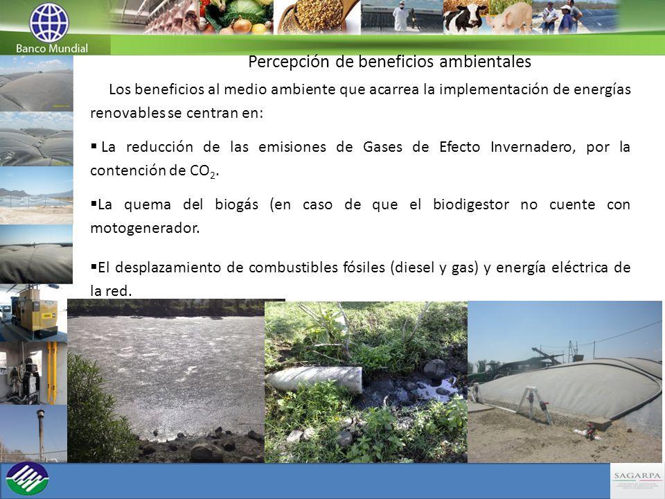 Percepción de beneficios ambientales