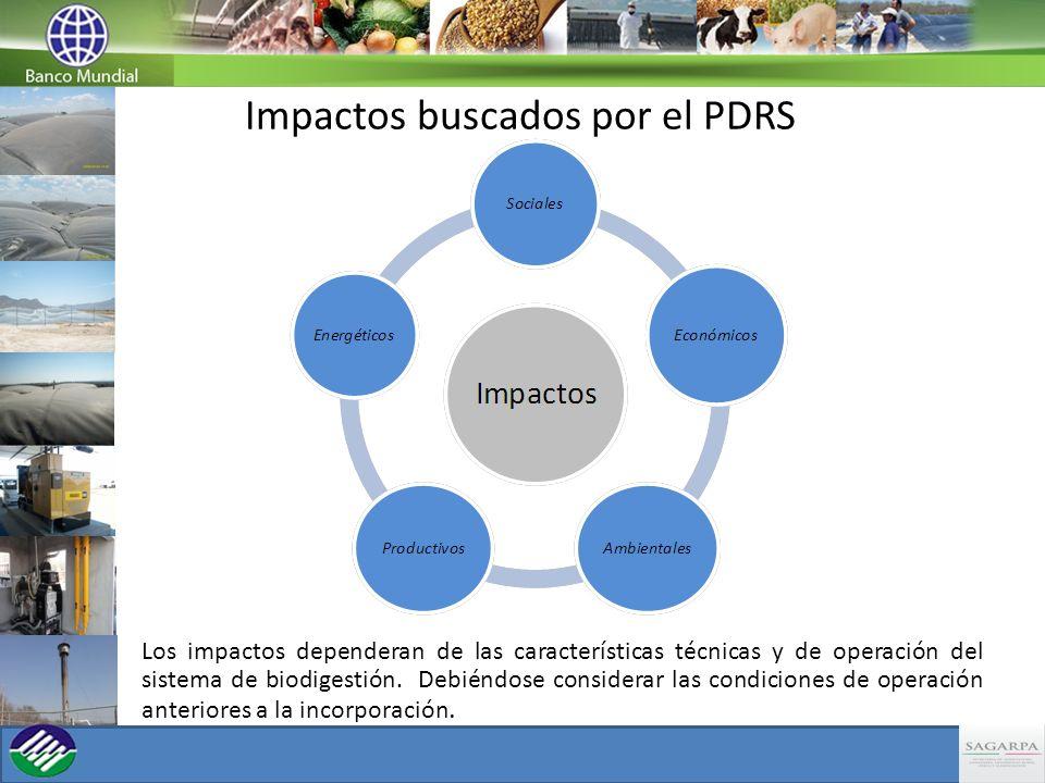 Impactos buscados por el PDRS