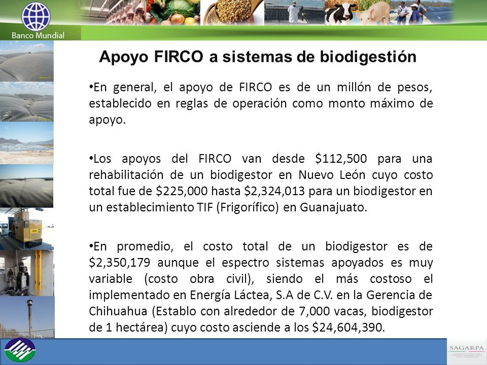 Apoyo FIRCO a sistemas de biodigestión