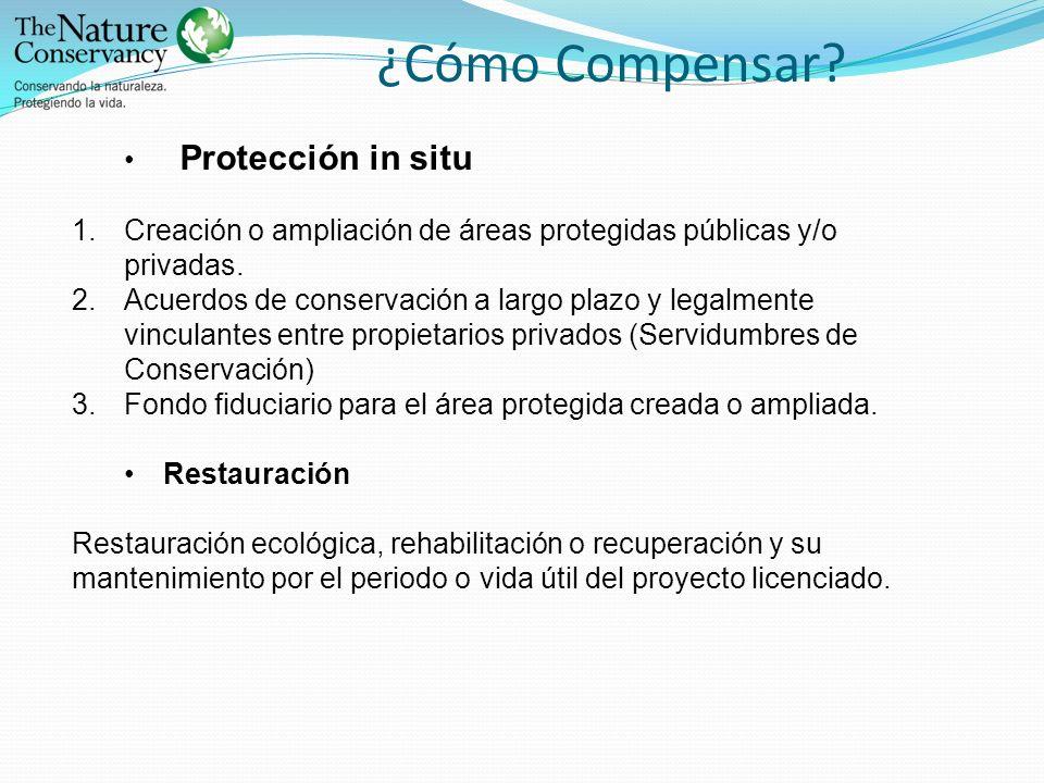 ¿Cómo Compensar Protección in situ