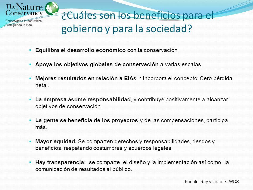 ¿Cuáles son los beneficios para el gobierno y para la sociedad