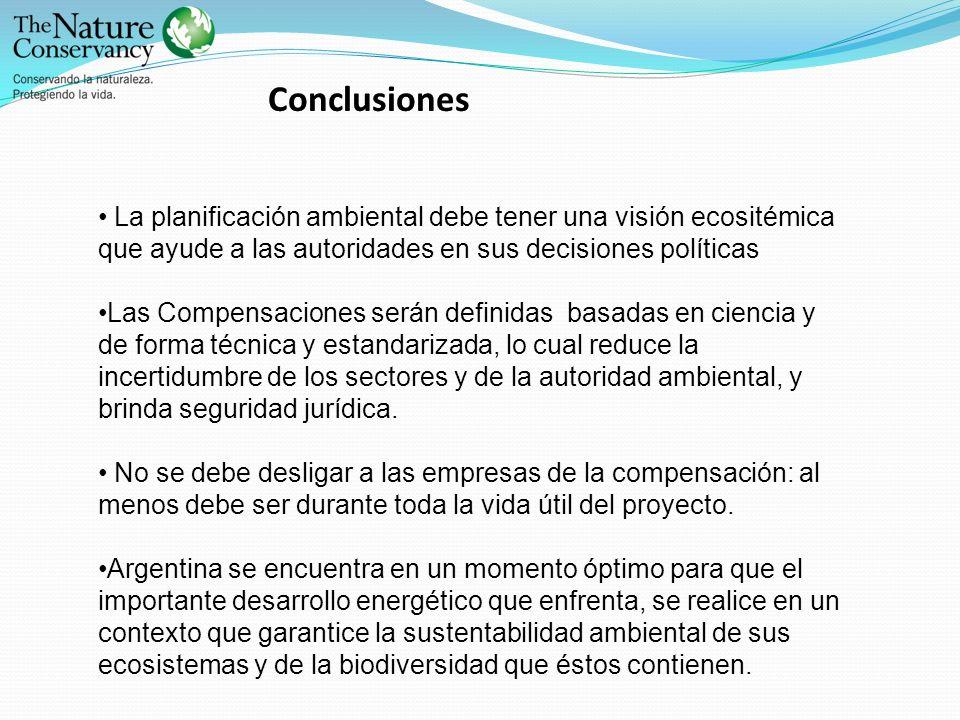 Conclusiones La planificación ambiental debe tener una visión ecositémica que ayude a las autoridades en sus decisiones políticas.